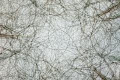 Panoramafotografie bis 360 Grad
