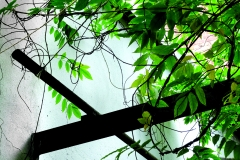 anne-hooss_03968_web